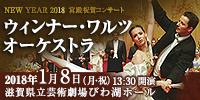 NEW YEAR 2018 宮殿祝賀コンサート ウィンナー・ワルツ オーケストラ