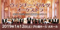 ウィンナー・ワルツ・オーケストラ NEW YEAR 2019 宮殿祝賀コンサート